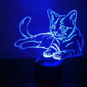 Dla domu - Kot