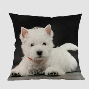 Dla domu - Pies